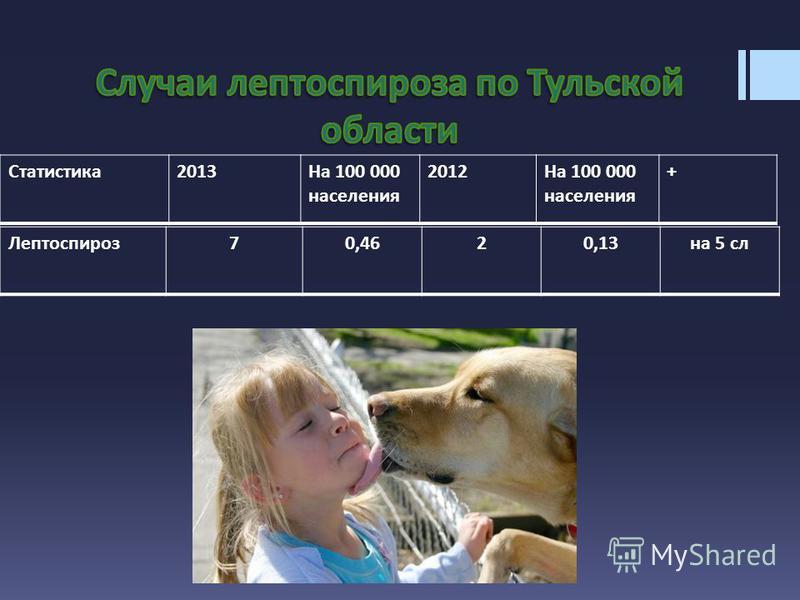 Лептоспироз70,4620,13на 5 сл Статистика2013На 100 000 населения 2012На 100 000 населения +