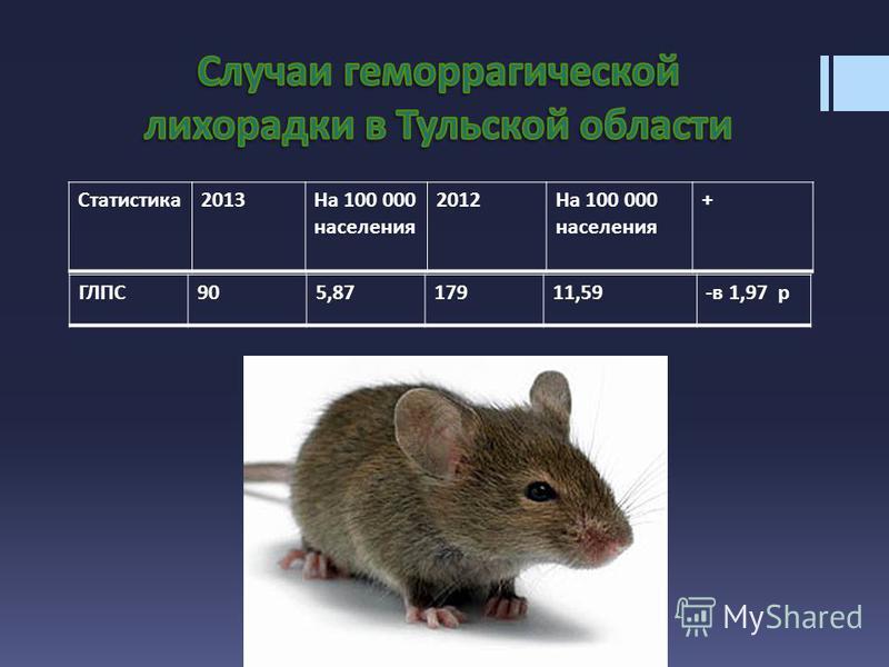 ГЛПС905,8717911,59-в 1,97 р Статистика2013На 100 000 населения 2012На 100 000 населения +