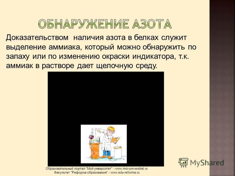 Доказательством наличия азота в белках служит выделение аммиака, который можно обнаружить по запаху или по изменению окраски индикатора, т.к. аммиак в растворе дает щелочную среду. Образовательный портал