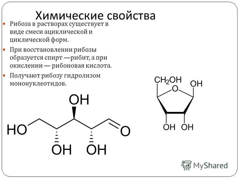 Химические свойства Рибоза в растворах существует в виде смеси ациклической и циклической форм. При восстановлении рибозы образуется спирт рибит, а при окислении рябиновая кислота. Получают рибозу гидролизом мононуклеотидов.