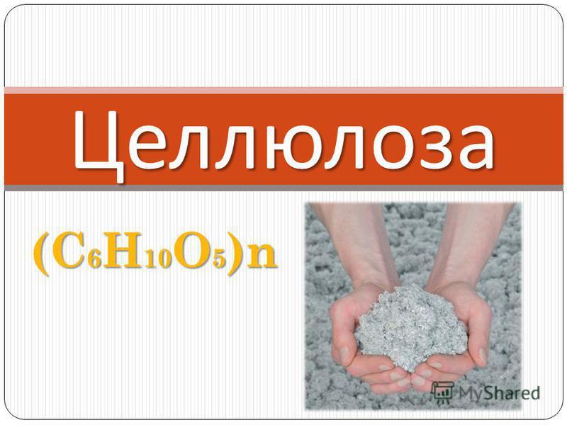 (C 6 H 10 O 5 )n Целлюлоза