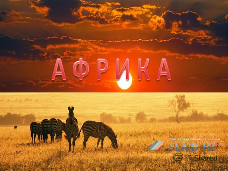 www.slaid-kz.ru