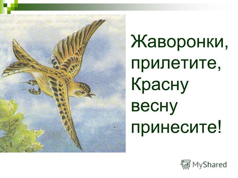 Жаворонки, прилетите, Красну весну принесите!
