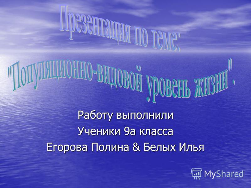 Работу выполнили Ученики 9 а класса Егорова Полина & Белых Илья