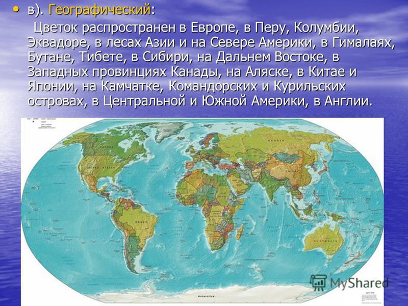 в). Географический: в). Географический: Цветок распространен в Европе, в Перу, Колумбии, Эквадоре, в лесах Азии и на Севере Америки, в Гималаях, Бутане, Тибете, в Сибири, на Дальнем Востоке, в Западных провинциях Канады, на Аляске, в Китае и Японии,