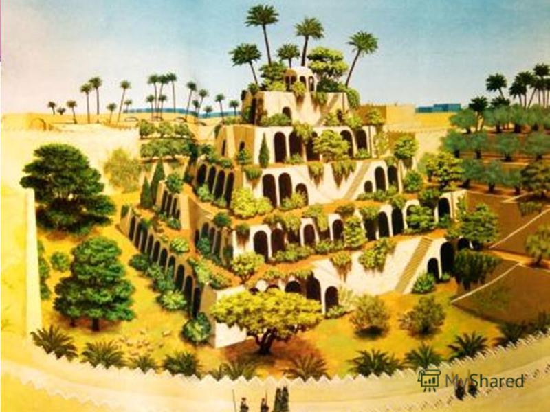 Деревья, кусты, семена трав и цветов поступали во дворец со всего света. Вавилонский царь Навуходоносор создал их, чтобы унять печаль своей жены, персиянки, по родине. Первый в мире ботанический сад.