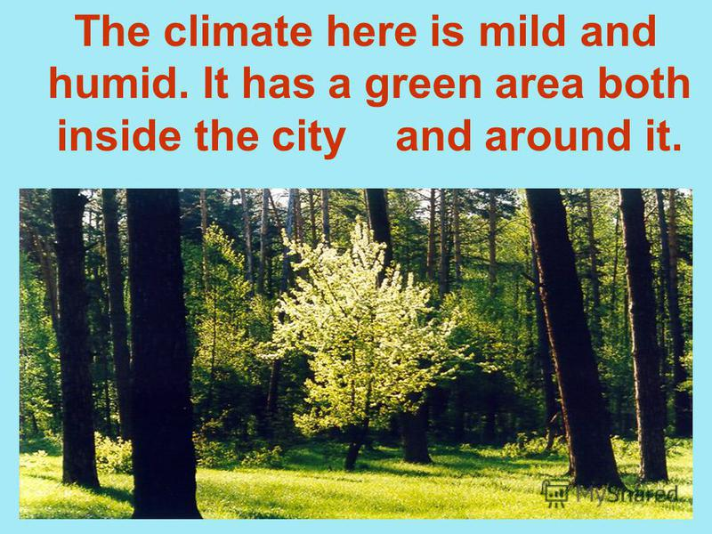 The climate here is mild and humid. It has a green area both inside the city and around it.