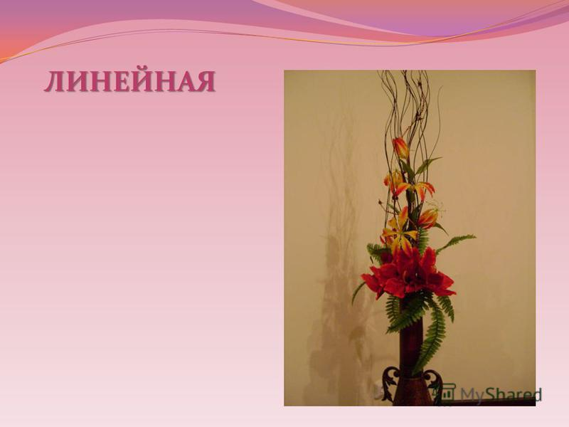 ЛИНЕЙНАЯ