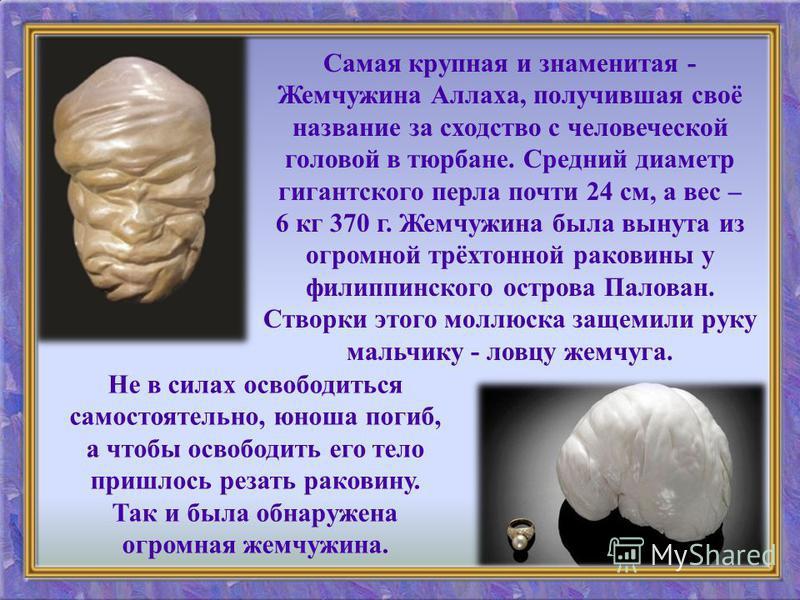 Самая крупная и знаменитая - Жемчужина Аллаха, получившая своё название за сходство с человеческой головой в тюрбане. Средний диаметр гигантского перла почти 24 см, а вес – 6 кг 370 г. Жемчужина была вынута из огромной трёхтонной раковины у филиппинс