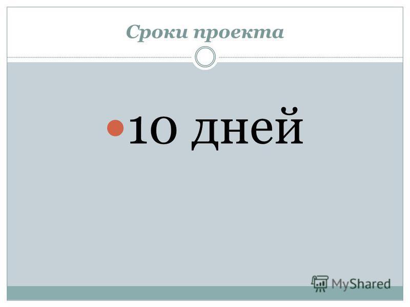 Сроки проекта 10 дней