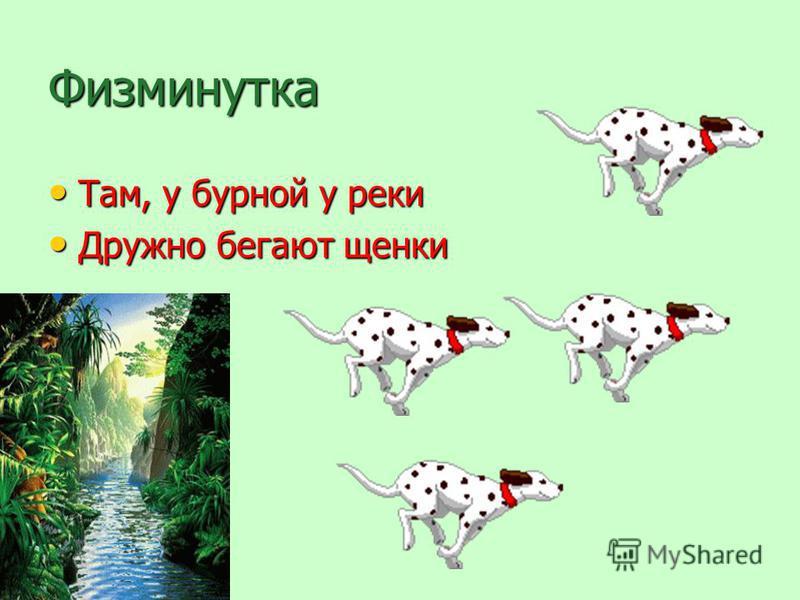 Физминутка Там, у бурной у реки Там, у бурной у реки Дружно бегают щенки Дружно бегают щенки