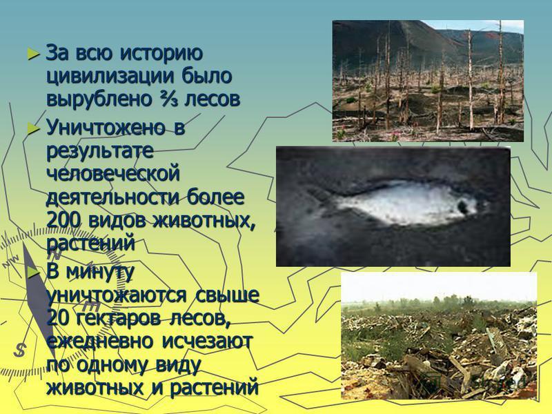 За всю историю цивилизации было вырублено лесов За всю историю цивилизации было вырублено лесов Уничтожено в результате человеческой деятельности более 200 видов животных, растений Уничтожено в результате человеческой деятельности более 200 видов жив