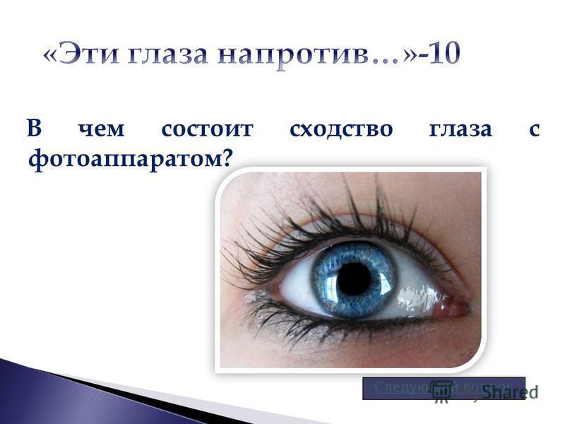В чем состоит сходство глаза с фотоаппаратом? Следующий вопрос