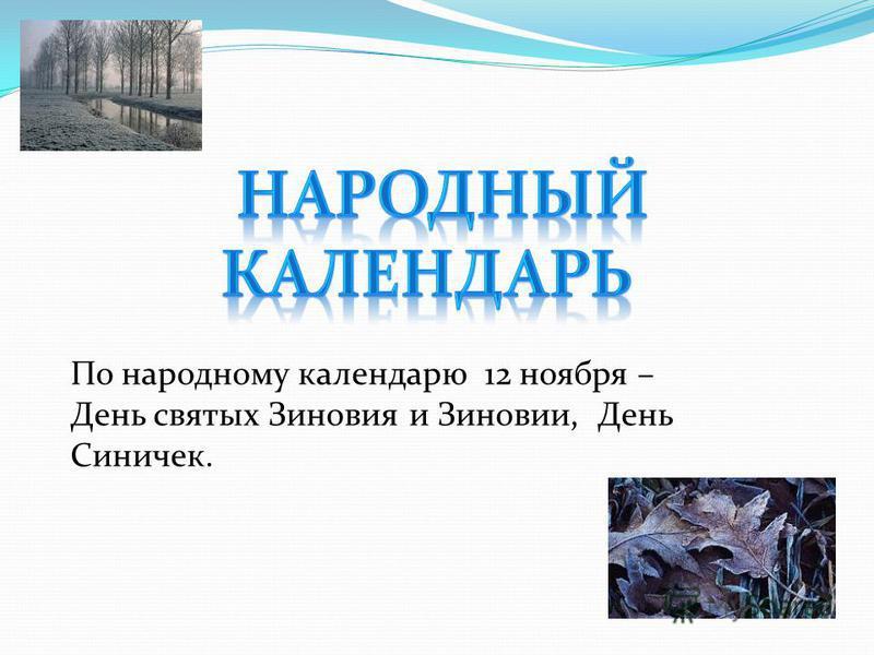 По народному календарю 12 ноября – День святых Зиновия и Зиновии, День Синичек.