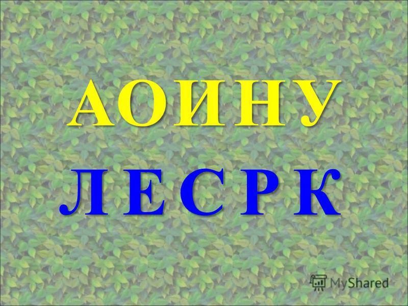 АОУИН КРСЕЛ