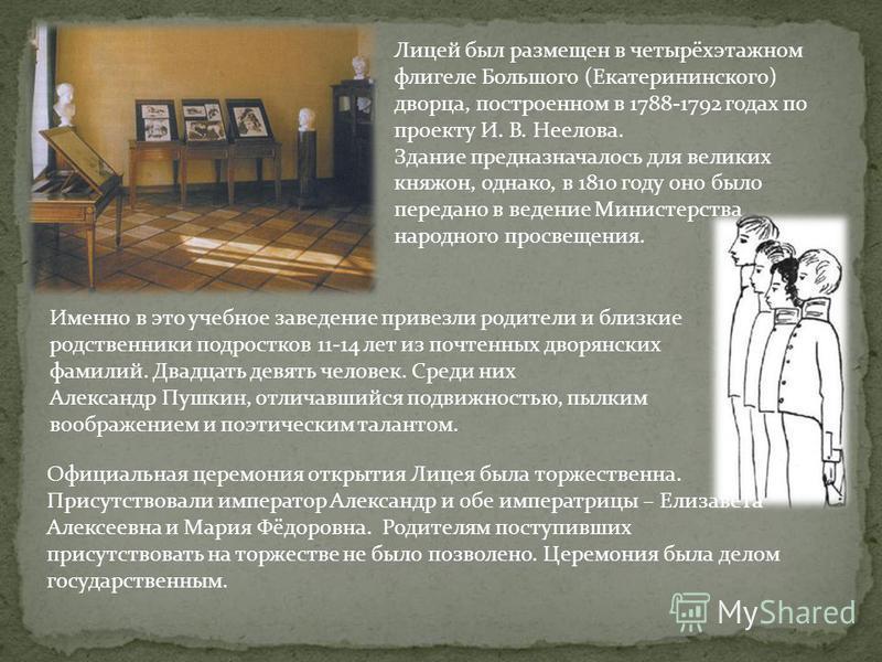 Лицей был размещен в четырёхэтажном флигеле Большого (Екатерининского) дворца, построенном в 1788-1792 годах по проекту И. В. Неелова. Здание предназначалось для великих княжон, однако, в 1810 году оно было передано в ведение Министерства народного п