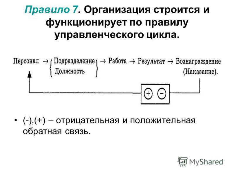 Правило 7. Организация строится и функцииионирует по правилу управленческого цикла. (-),(+) – отрицательная и положительная обратная связь.