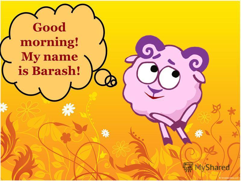 Good morning! My name is Barash!