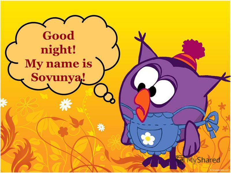 Good night! My name is Sovunya!