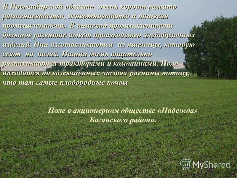 В Новосибирской области очень хорошо развито растениеводство, животноводство и пищевая промышленность. В пищевой промышленности большое развитие имеет производство хлебобулочных изделий. Они изготавливаются из пшеницы, которую сеют на полях. Пашни оч