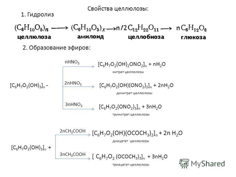 Свойства целлюлозы: 1. Гидролиз nHNO 3 [C 6 H 7 O 2 (OH) 2 ONO 2 ] n + nH 2 O нитрат целлюлозы [C 6 H 7 O 2 (OH) 3 ] n - 2nHNO 3 [C 6 H 7 O 2 (OH)(ONO 2 ) 2 ] n + 2nH 2 O динитрат целлюлозы 3nHNO 3 [C 6 H 7 O 2 (ONO 2 ) 3 ] n + 3nH 2 O тринитрат целл