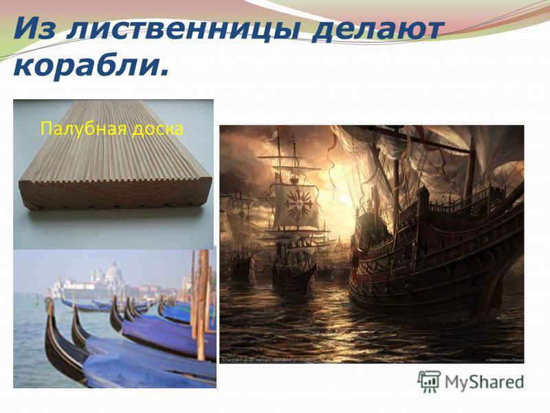 Из лиственницы делают корабли. Палубная доска