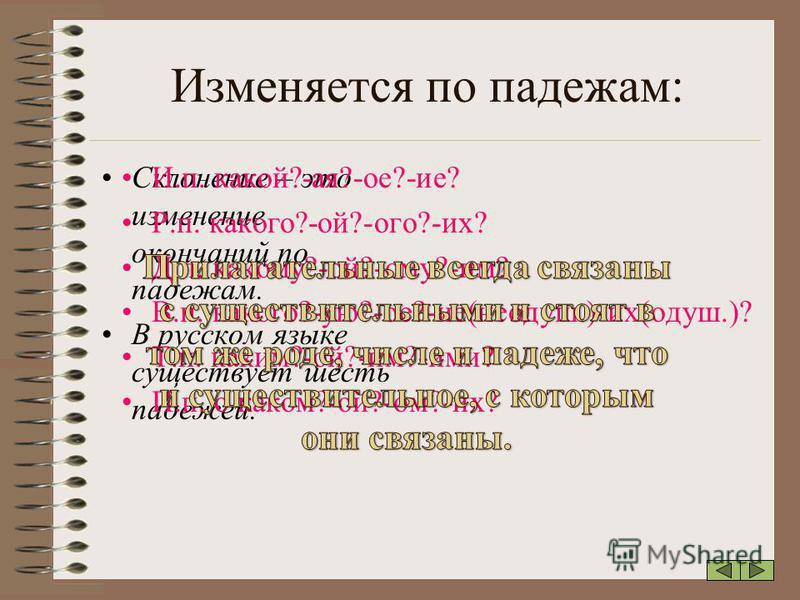 Изменяется по падежам: Склонение – это изменение окончаний по падежам. В русском языке существует шесть падежей. И.п. какой?-ая?-ое?-ие? Р.п. какого?-ой?-ого?-их? Д.п. какому?-ой?-ому?-им? В.п. какого?-ую?-ое?-ие(неодуш.)-их(одуш.)? Т.п. каким?-ой?-и