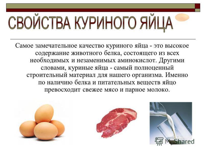 Самое замечательное качество куриного яйца - это высокое содержание животного белка, состоящего из всех необходимых и незаменимых аминокислот. Другими словами, куриные яйца - самый полноценный строительный материал для нашего организма. Именно по нал