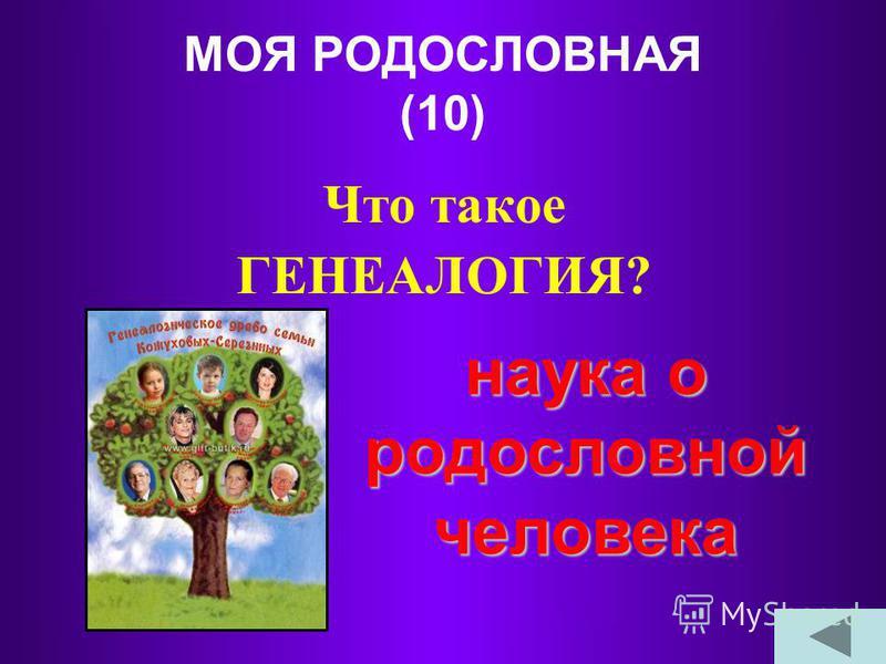 ЛЕНТА ВРЕМЕНИ (50) Сколько лет длится «наша эра»? 2009 лет