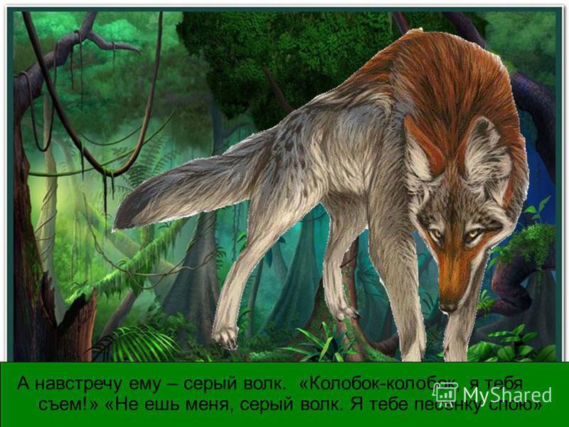А навстречу ему – серый волк. «Колобок-колобок, я тебя съем!» «Не ешь меня, серый волк. Я тебе песенку спою»