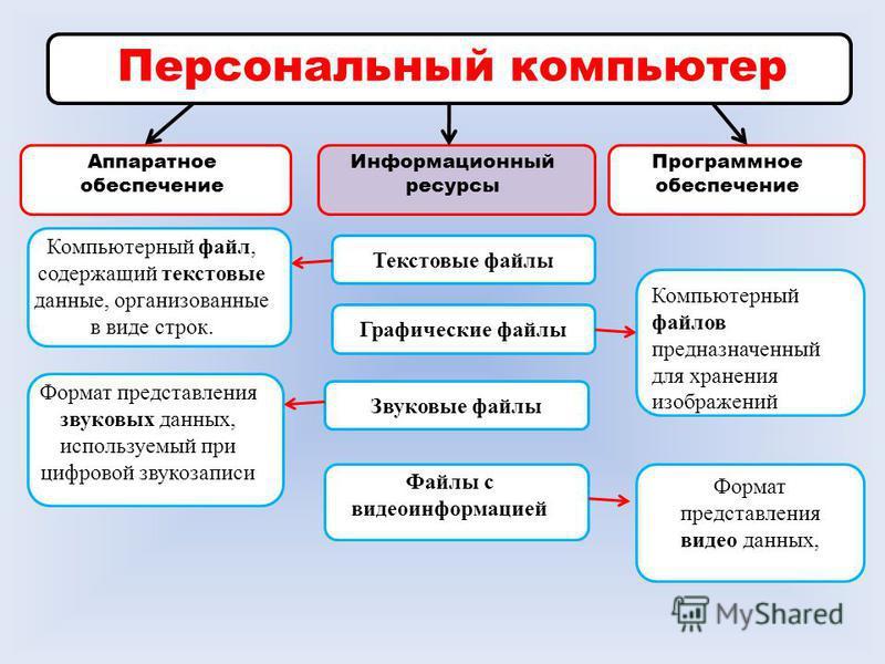 Персональный компьютер Аппаратное обеспечение Информационный ресурсы Программное обеспечение Текстовые файлы Графические файлы Звуковые файлы Файлы с видеоинформацией Компьютерный файл, содержащий текстовые данные, организованные в виде строк. Формат
