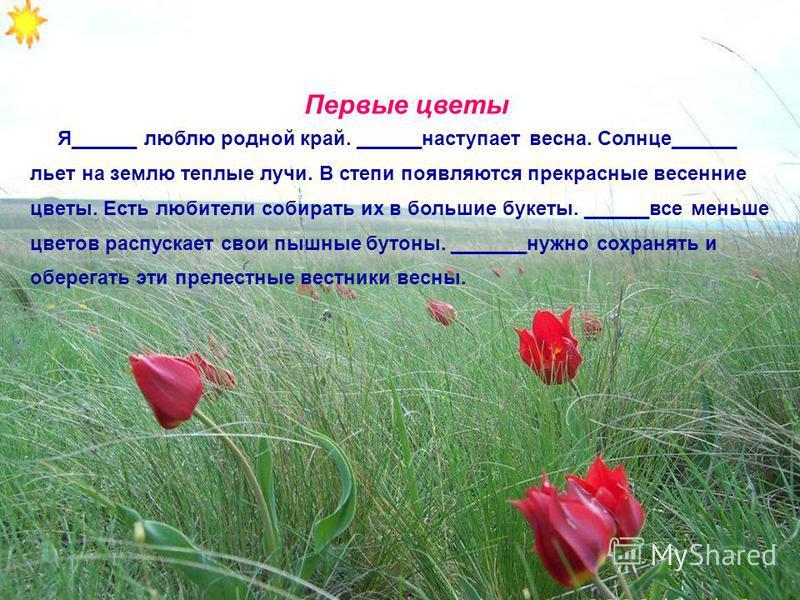 Первые цветы Я______ люблю родной край. ______наступает весна. Солнце______ льет на землю теплые лучи. В степи появляются прекрасные весенние цветы. Есть любители собирать их в большие букеты. ______все меньше цветов распускает свои пышные бутоны. __