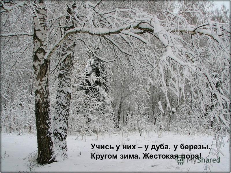Пункт 1 Пункт 2 Пункт 3 – Вложенный пункт 1 – Вложенный пункт 2 – Вложенный пункт 3 Учись у них – у дуба, у березы. Кругом зима. Жестокая пора!