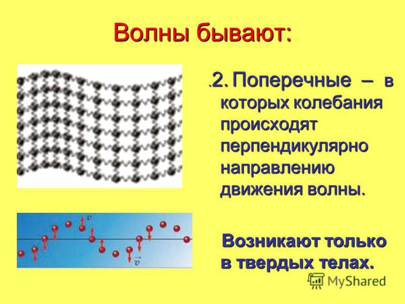 Волны бывают:. 2. Поперечные – в которых колебания происходят перпендикулярно направлению движения волны.. 2. Поперечные – в которых колебания происходят перпендикулярно направлению движения волны. Возникают только в твердых телах. Возникают только в