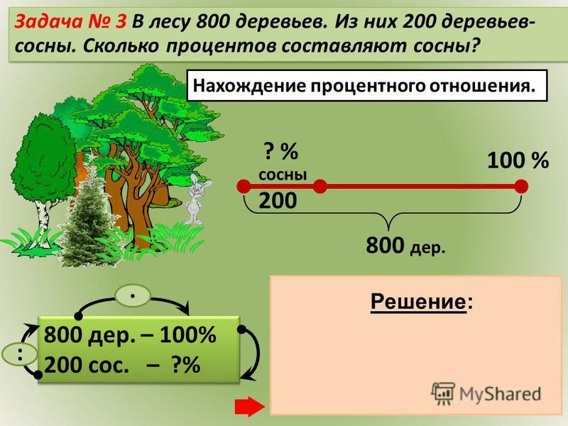 Нахождение процентного отношения. 800 дер. – 100% 200 сос. – ?% 800 дер. – 100% 200 сос. – ?% 1)200 : 800 = 0,25 2)0,25. 100 = 25 (%) – сосны Ответ: 25% сосен.. Решение: Задача 3 В лесу 800 деревьев. Из них 200 деревьев- сосны. Сколько процентов сост