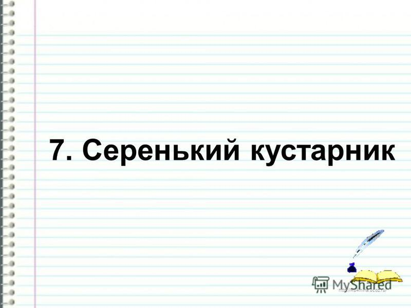 http://ku4mina.ucoz.ru/ 7. Серенький кустарник