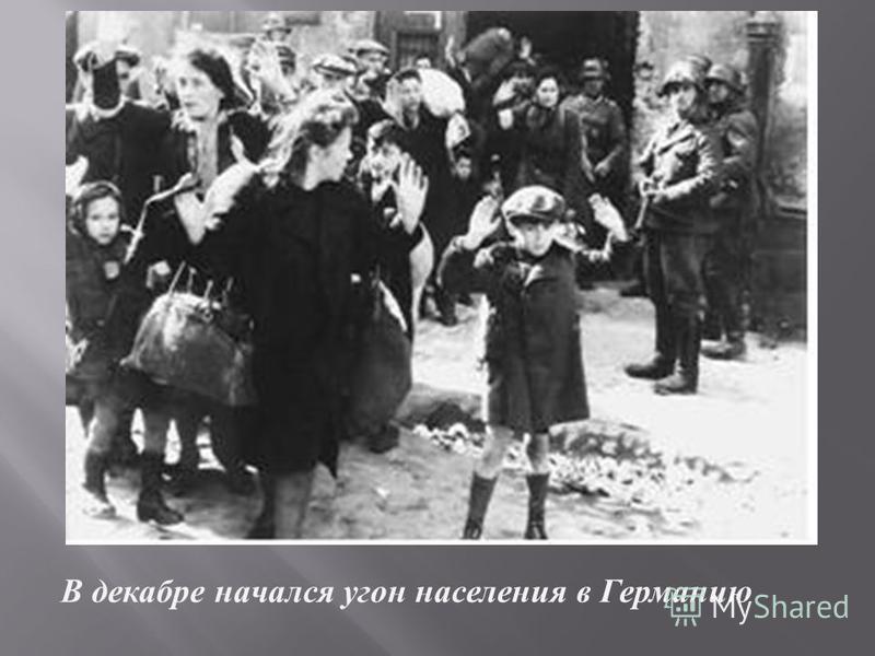 В декабре начался у гон населения в Г ерманию