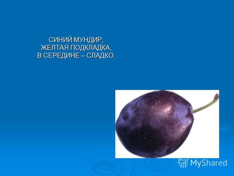 СИНИЙ МУНДИР, ЖЕЛТАЯ ПОДКЛАДКА, В СЕРЕДИНЕ – СЛАДКО.