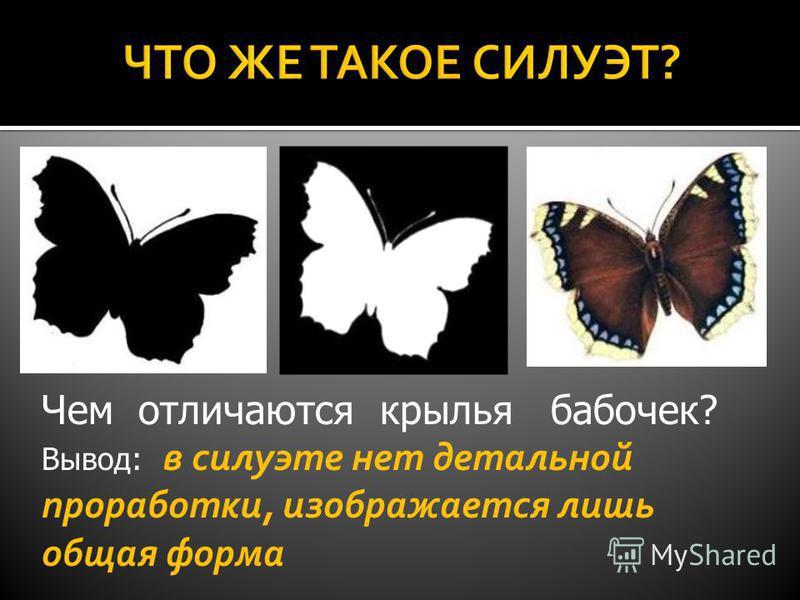 Чем отличаются крылья бабочек? Вывод: в силуэте нет детальной проработки, изображается лишь общая форма