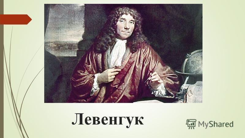 Левенгук