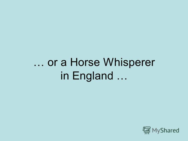 … or a Horse Whisperer in England …