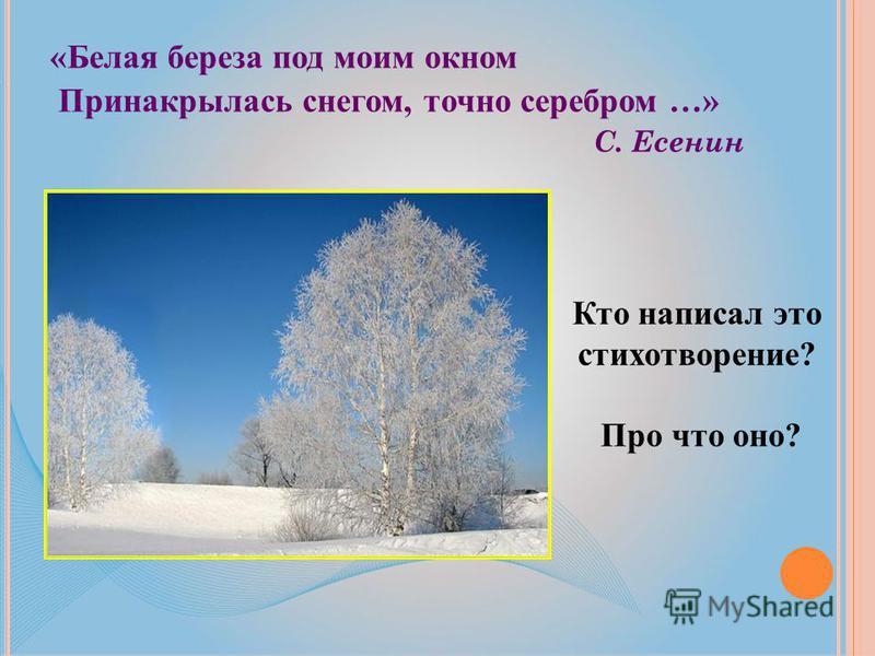 «Белая береза под моим окном Принакрылась снегом, точно серебром …» С. Есенин Кто написал это стихотворение? Про что оно?