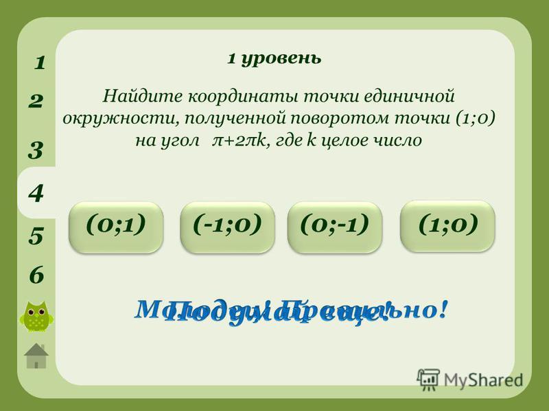 1 уровень 1 2 3 4 5 6 (0;-1)(-1;0)(0;1) Найдите координаты точки единичной окружности, полученной поворотом точки (1;0) на угол π+2πk, где k целое число (1;0)