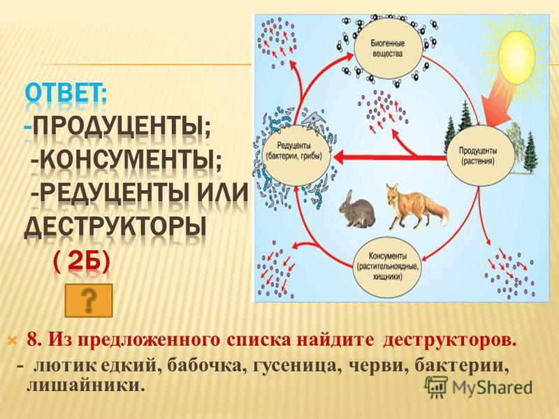 8. Из предложенного списка найдите деструкторов. - лютик едкий, бабочка, гусеница, черви, бактерии, лишайники.