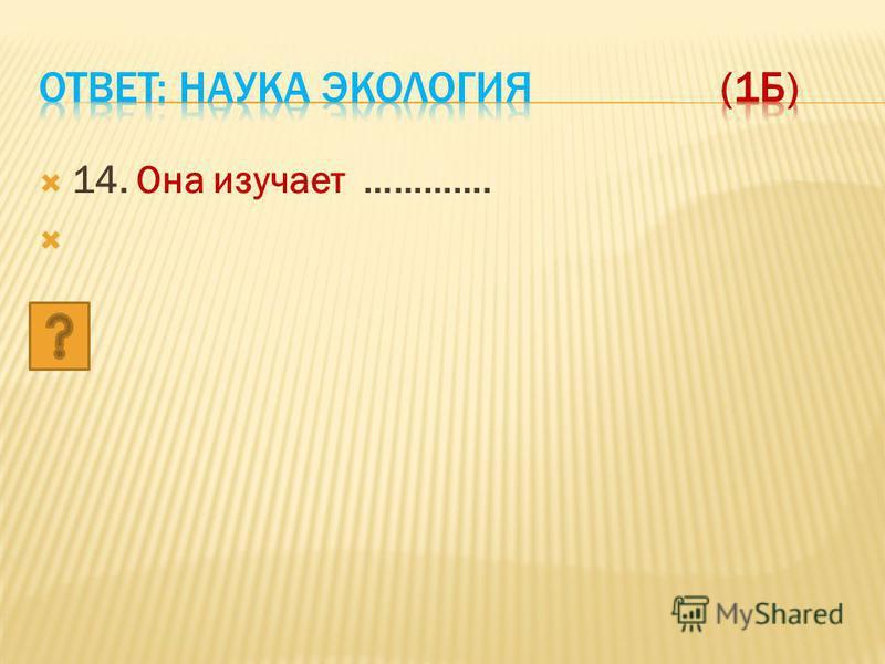 14. Она изучает ………….