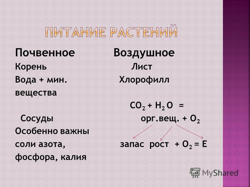 Почвенное Воздушное Корень Лист Вода + мин. Хлорофилл вещества СО 2 + Н 2 О = Сосуды орг.вещ. + О 2 Особенно важны соли азота, запас рост + О 2 = Е фосфора, калия