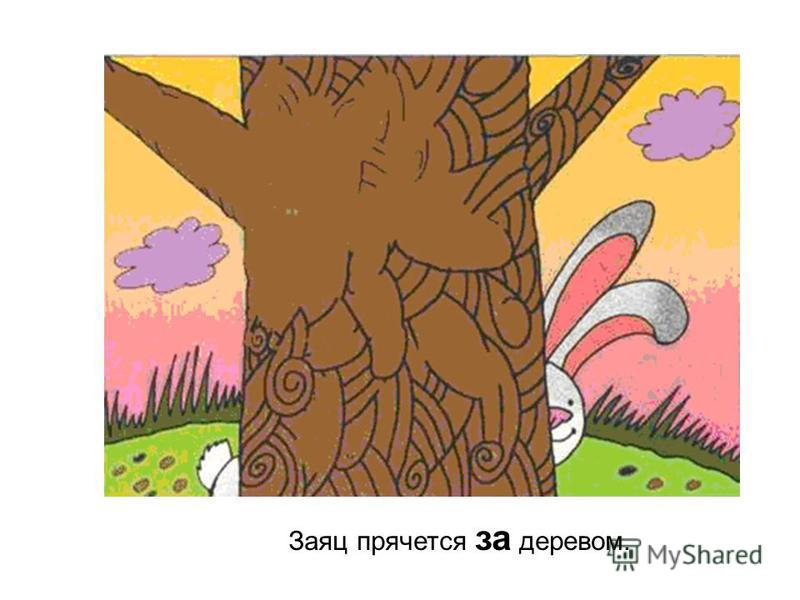 Заяц прячется за деревом.