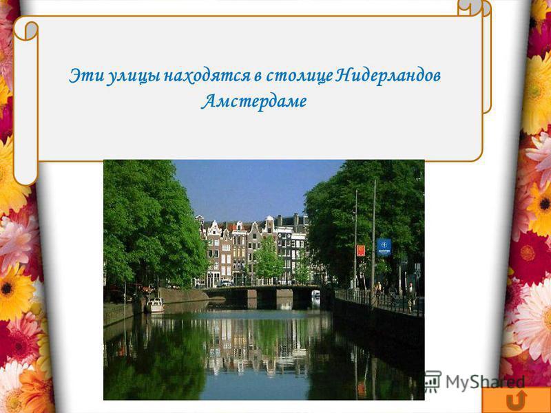 В каком европейском городе есть улицы Пифагора, Архимеда, Ньютона, Коперника? Эти улицы находятся в столице Нидерландов Амстердаме