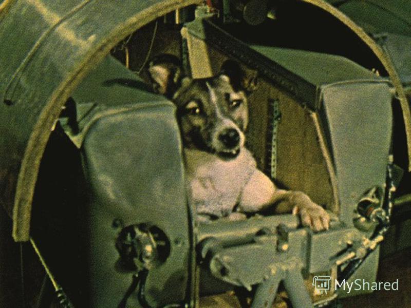« Спутник -2» с живым пассажиром на борту 3 ноября 1957 года стр 6