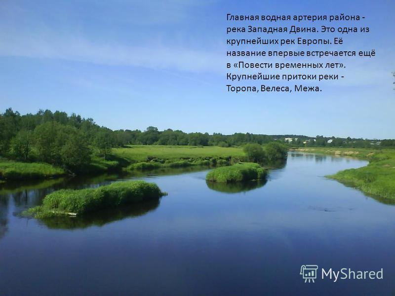 Главная водная артерия района - река Западная Двина. Это одна из крупнейших рек Европы. Её название впервые встречается ещё в «Повести временных лет». Крупнейшие притоки реки - Торопа, Велеса, Межа.